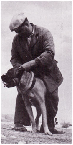 Paolo Breber et cane Corso